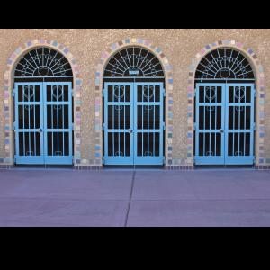 commercialsecuritydoor2